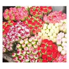 RFID для цветочной промышленности